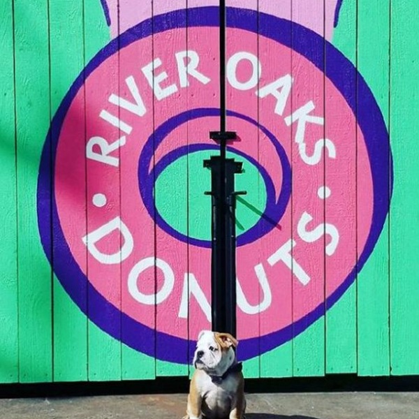 When doggies and donuts are involved, you know it's going to be a good day!